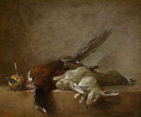 死去的兔子和鸟图片