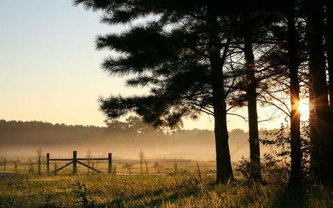 草地日出风景壁纸
