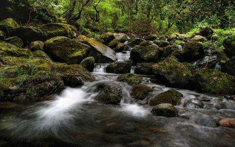 美丽小溪风景壁纸