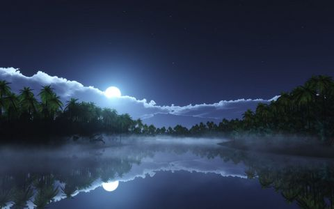 树林湖面夜晚风景