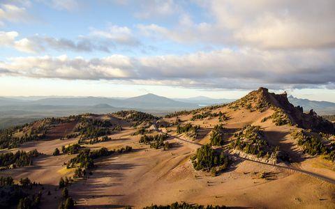 美丽荒漠树木风景