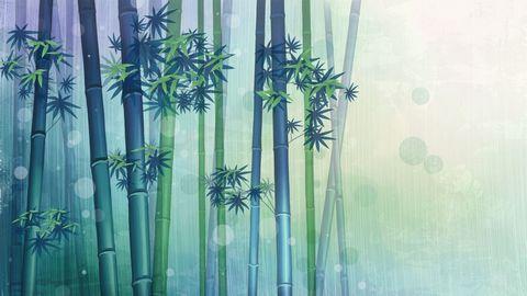 卡通竹林风景