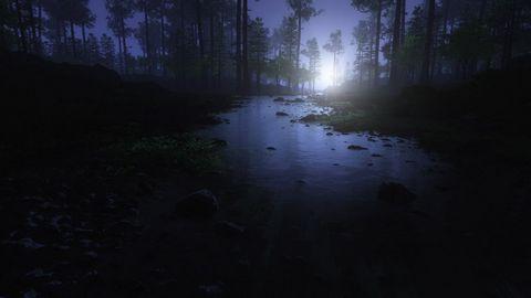 树林小溪夜晚风景
