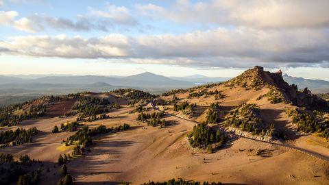 美丽荒漠树林风景