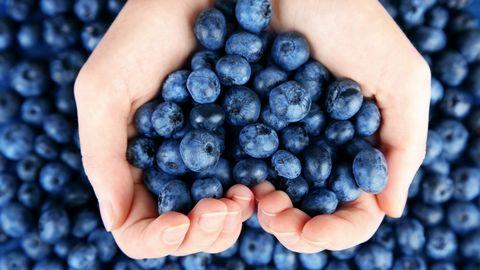 双手捧着的蓝莓