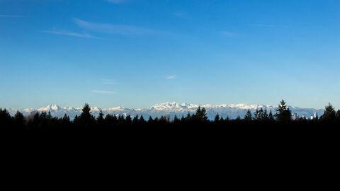 蓝天白云与树林高清背景