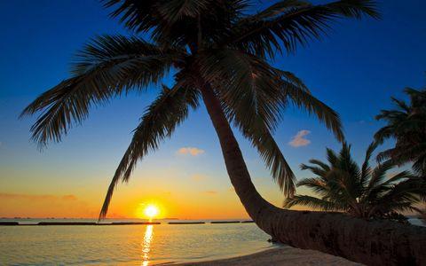 旅游区大海日出图片