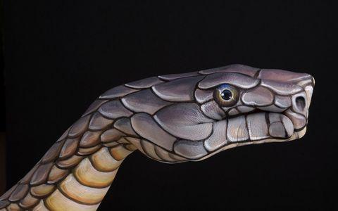 卡通蛇动物设计