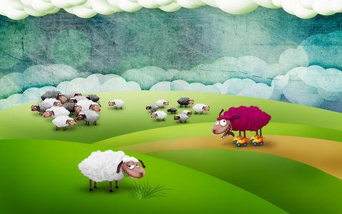 草地上的羊