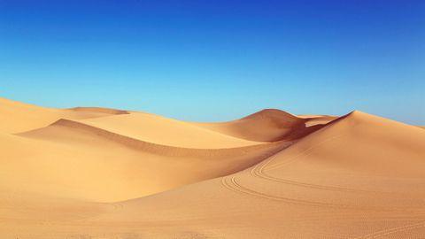 金色沙漠壁纸