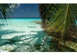 热带海岸风光